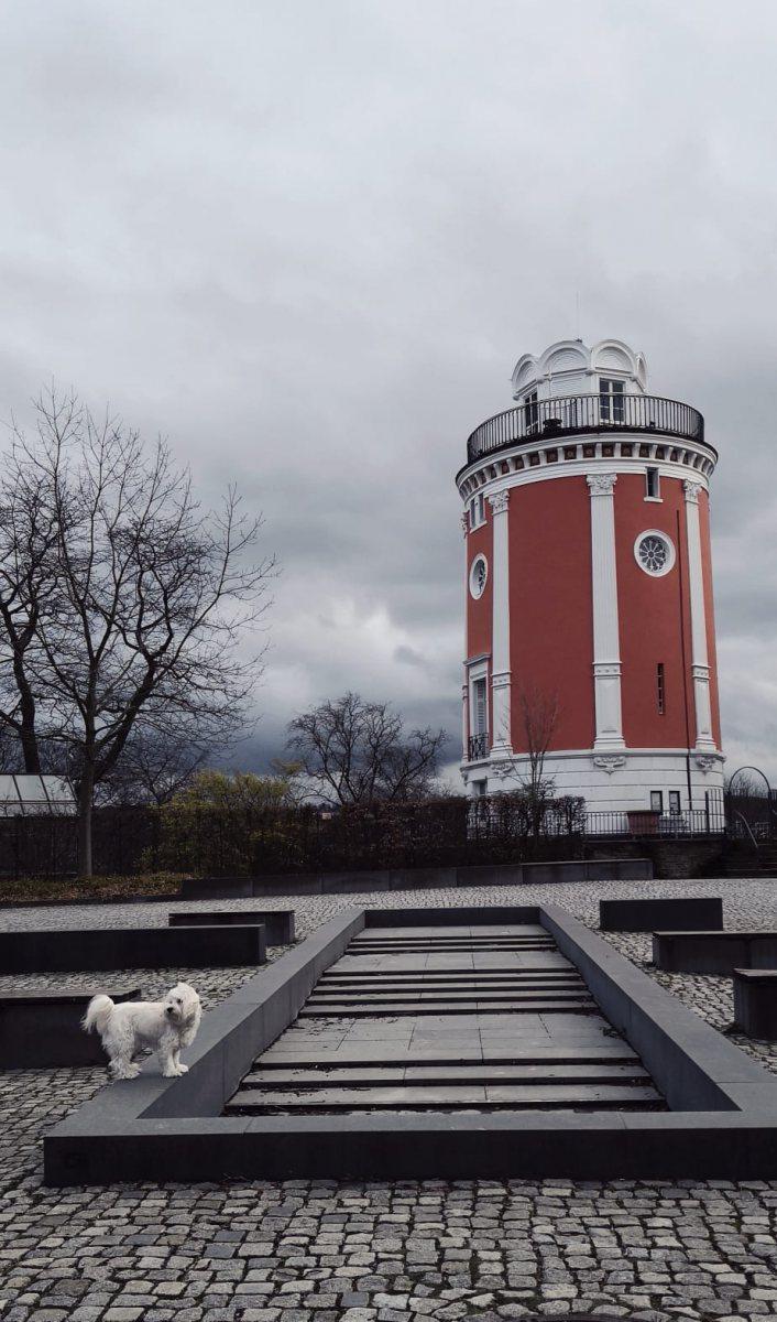 Elisenturm-auf-der-Hardt